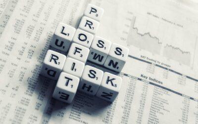 Understanding the Southeast Asia Venture Capital Risk Premium